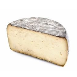 Semi-Soft Cheese