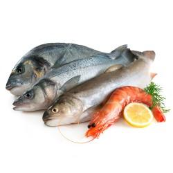 Pesci, Crostacei, Molluschi