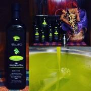 Bott. 0.75L Olio ExtraVergine d'Oliva Biologico