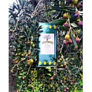 Extra Virgin Olive Oil Apulia 5 Lt.