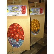 Cherry tomatoes from Piennolo del Vesuvio