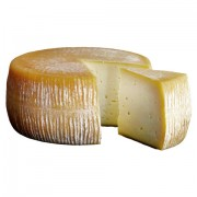 Pecorino cheese from Gargano