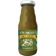 Nettare Biologico di Kiwi Zenzero con zucchero d'uva 200ml
